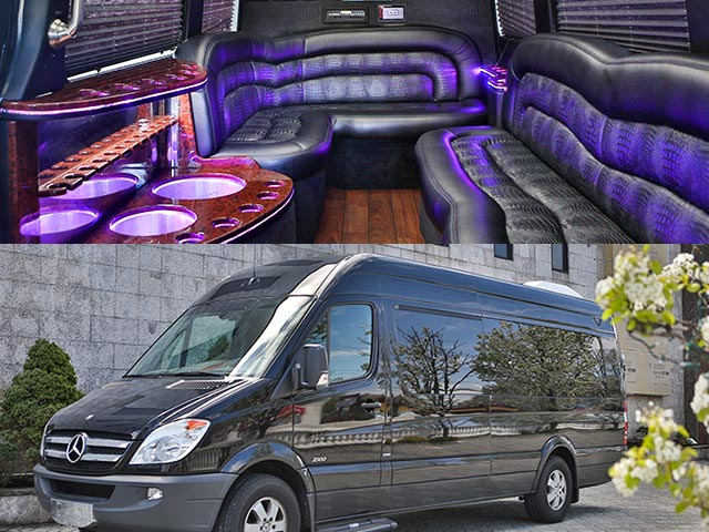 Luxury Sprinter Van