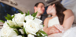 Wedding limo service Alpine NJ nj